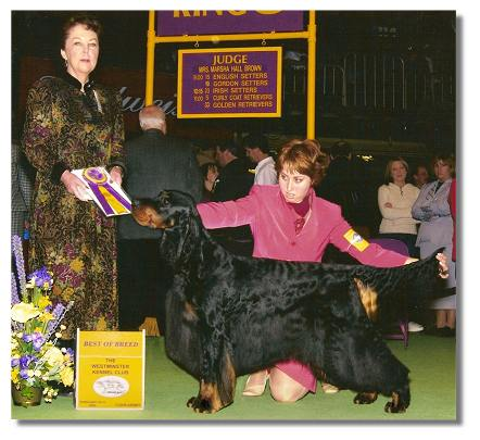 Best of Breed Westminster KC 2003 - Judge Marsha Hall Brown USA